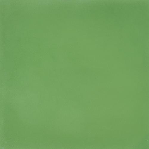 SAM Egal Verde S1305030