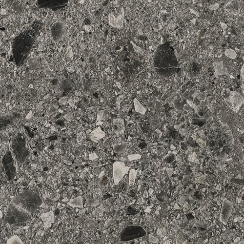 Fossil Ceppo Dark 120x120cm