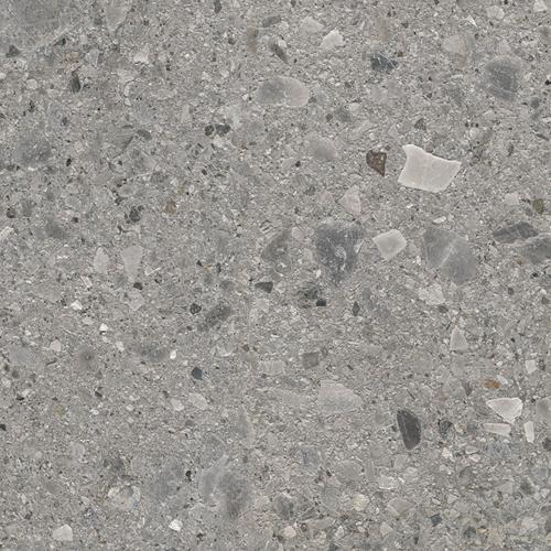 Fossil Ceppo Grey
