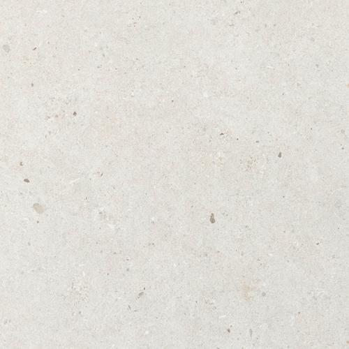 SAM Fossil White