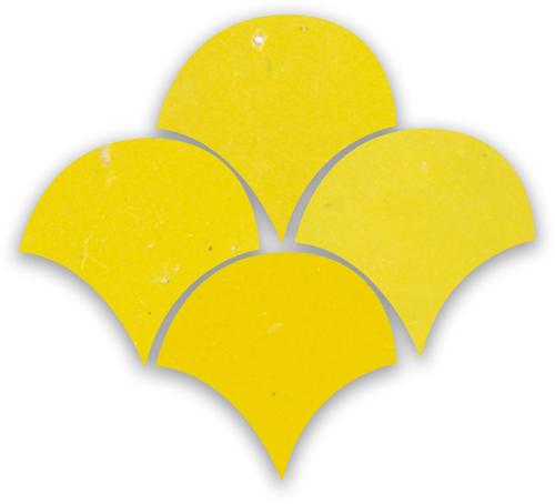 SAM Zellige Citron Poisson Echelles 10x10cm